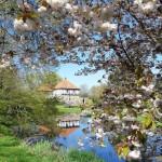 Schlosspark im Frühling